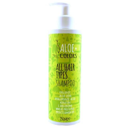 Shampoo - All Hair Types